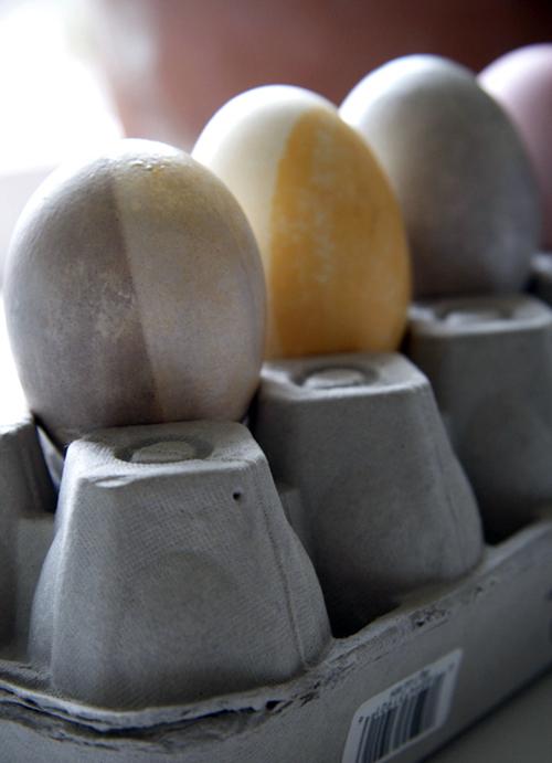 2010-04-eggdye