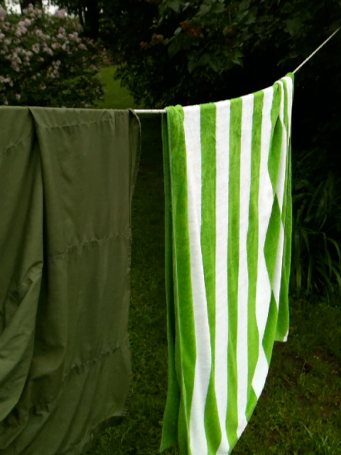 Green stripped towels