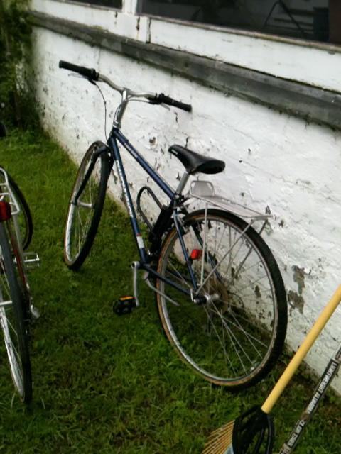 Bike clip